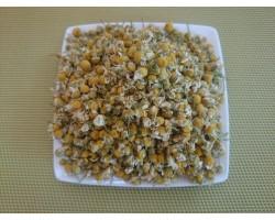 Camomille matricaire bio fleurs 50g