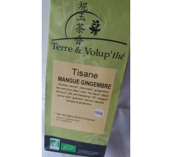 Tisane Mangue-Gingembre bio